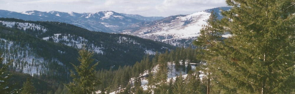 Eastern Washington landowners are committed stewards of the land in the face of numerous challenges including high fire risk, insect outbreaks and few markets.