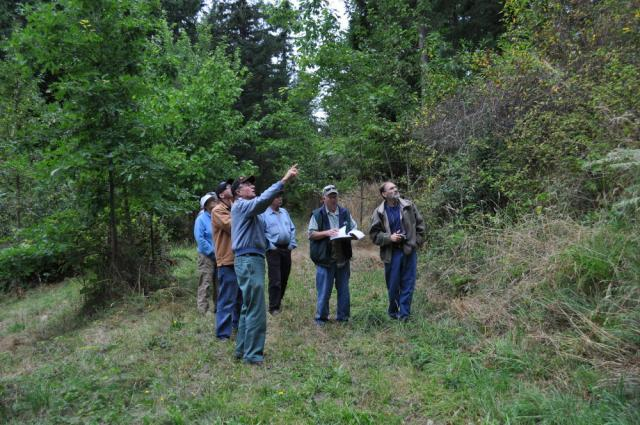 Upper Puget Sound Chapter Washington Farm Forestry