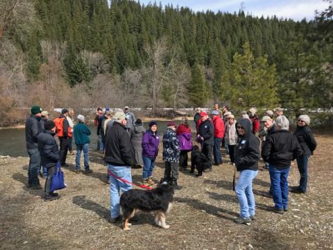Forestry & Wildlife field day on a members tree farm