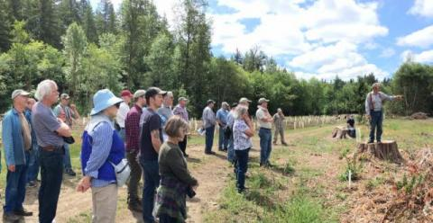 Tour on Ken Miller's Tree Farm, June 2018