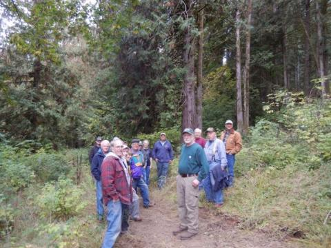 Bakke Tree Farm Tour - Sept. 29 - amongst a selective cut.