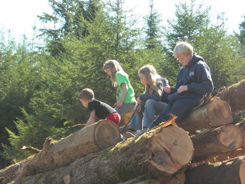 Tree Farm Tour Breaktime