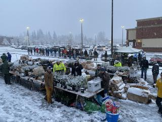 Hardy volunteers and dedicated tree buyers brave the snow at the 2020 public tree sale.