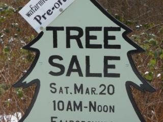 New Tree Sale sign advertising our first time with online orders.